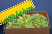 Box of D'Anjoy Pears