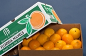 Box of Navel Oranges